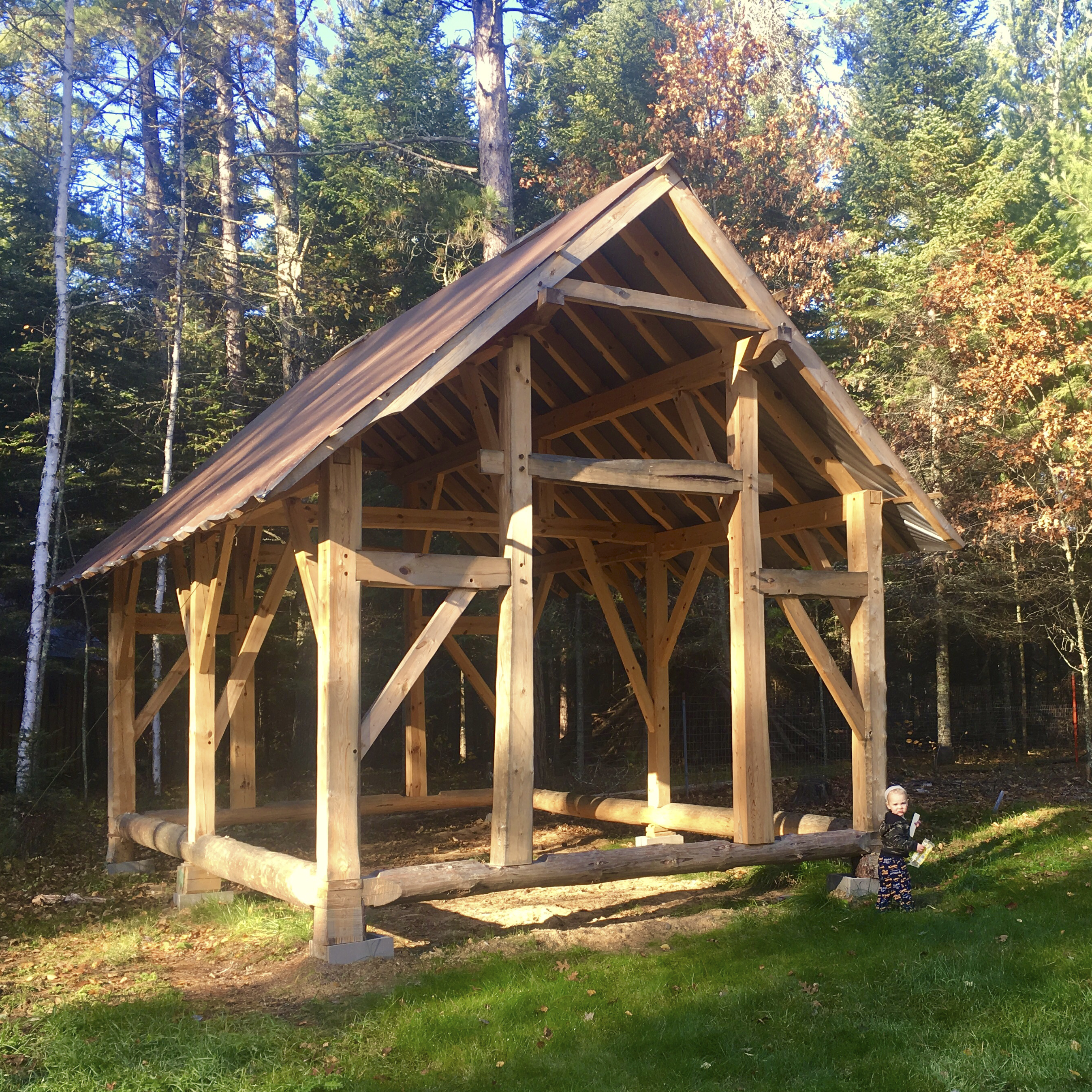 Timber Frame Buildings